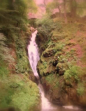 Aira Force © Michael Pitchford 2007