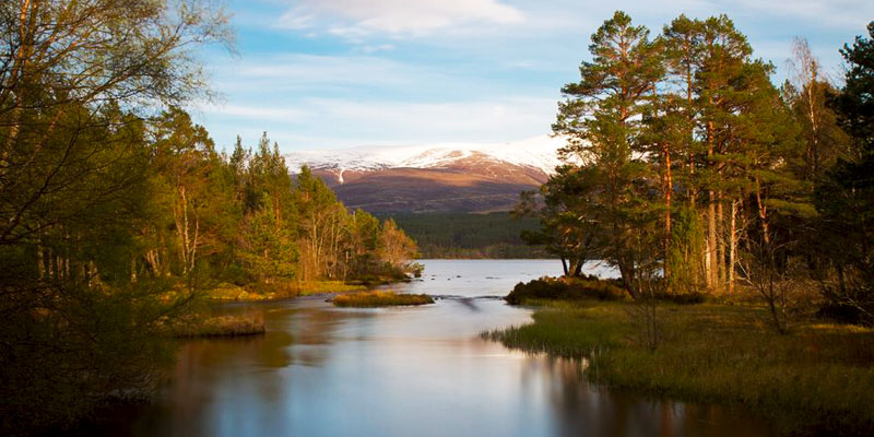 Holiday Accommodation and Attractions in Cairngorms National Park