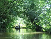 Parc interrgional du Marais poitevin, 