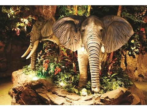 Rainforest cafe london child friendly attraction in for Rainforest londra