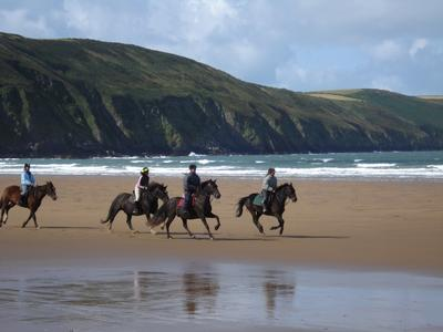 Horse riding holidays in North Devon Croyde, submitted by Simon Maddocks
