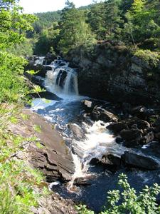 Rogie Falls Contin