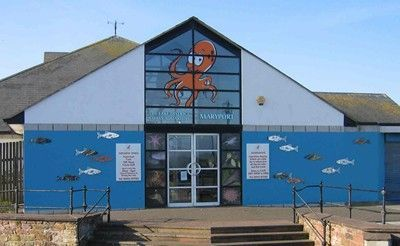 The Lake District Coast Aquarium Visitor Centre or Museum in Maryport ...
