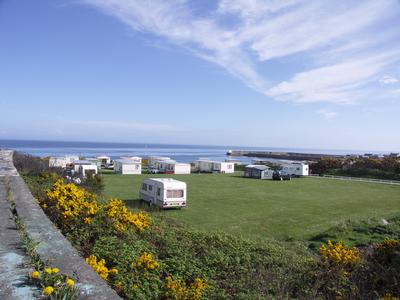 Station Caravan Park Pet Friendly Camping and Caravan Moray Firth