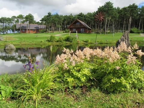 Aberdeenshire Dog Friendly Lodges