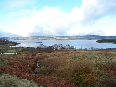 Dog Friendly Cottages Isle Of Mull