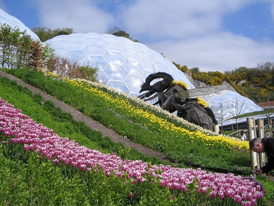 The Bee at the Eden Project